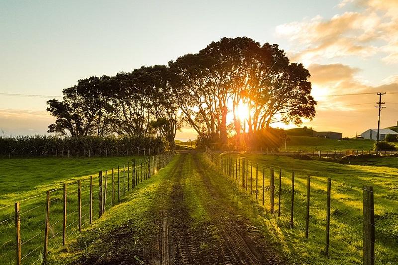 Australia Smart Farming Partnerships