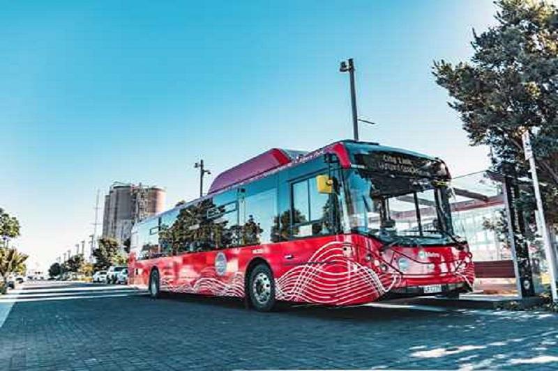 Auckland Electric Bus Fleet